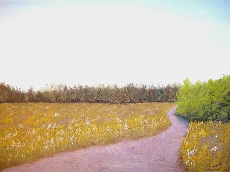 Late Summer Field by Dan Haley