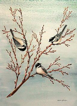 Gina Gahagan - Late Winter Chickadees