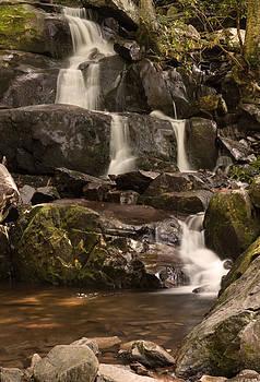 Laurel Falls 03 by Cindy Haggerty