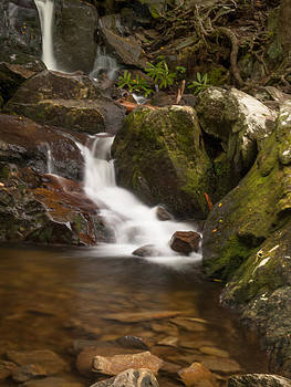 Laurel Falls 04 by Cindy Haggerty