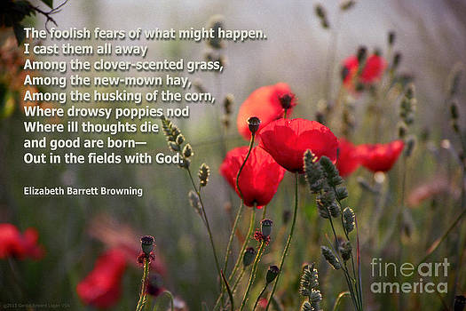 Lavender and Poppies with Poetry by Gerald MacLennon
