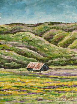 Lavender Fields by Gayle Utter