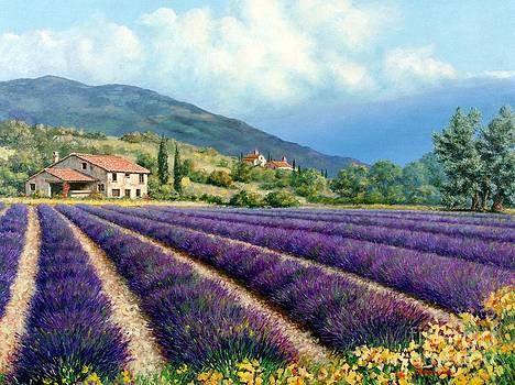 Lavender by Michael Swanson