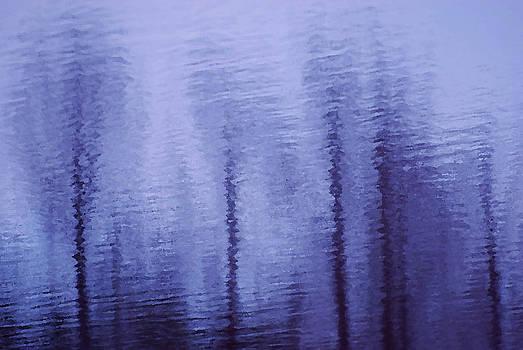 Lavender Sticks by Lorenzo Cassina