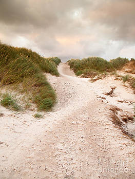 Leads to the Sea by David Hanlon