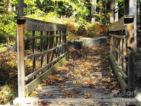 Leaf Covered Bridge by Lisa J Gifford