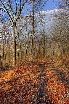 Regina  Williams  - Leafing Tracks