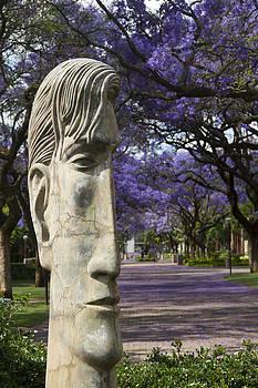 Learning to love purple by Taschja Hattingh