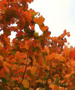 Leaves in the Sky by Anne Sterling
