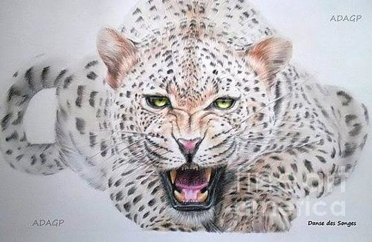 Leopard in coloured pencils by Danse DesSonges