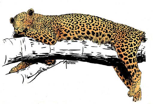Leopard's Rest by AnTon Takagari