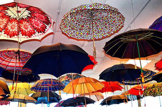 Cindy Nunn - Let It Rain