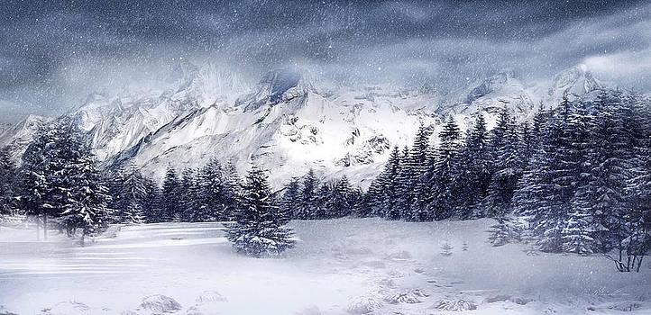 Svetlana Sewell - Let it Snow