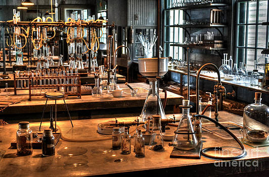 Life in the Lab by Timothy Lowry