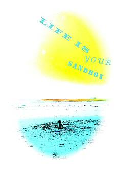 Life Is Your Sandbox by Brian D Meredith