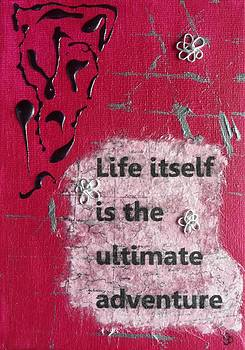 Life Ultimate Adventure - 3 by Gillian Pearce