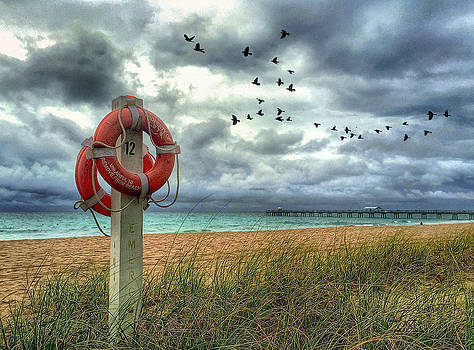 Lifesaver by Andrew Royston