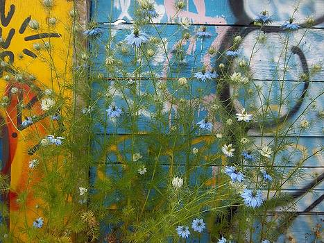 Light Blue Weeds by Carrie Williams