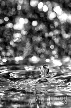 Light Bulb Water Drop by Linda Blair