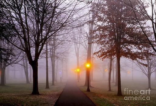 Brenda Giasson - Light the Way
