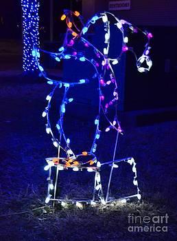 Lighted Penquin by Kathleen Struckle
