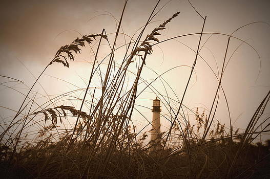 Laurie Perry - Lighthouse in the Distance inn Sepia