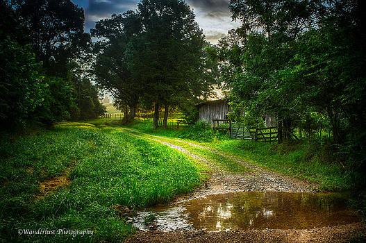 Lighting The Pathway Home by Paul Herrmann
