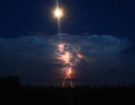 Lightning In The Moon Light by David  Jones