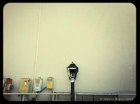 Lightpost by Natalie Rogers