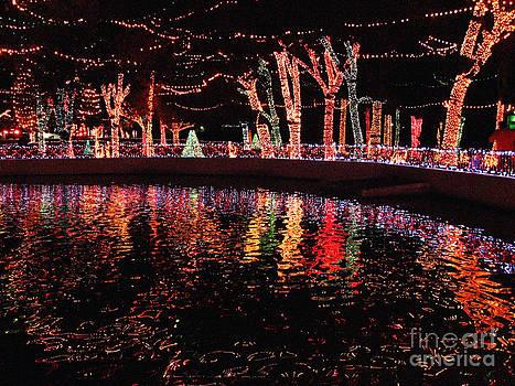Lights by Betty Morgan