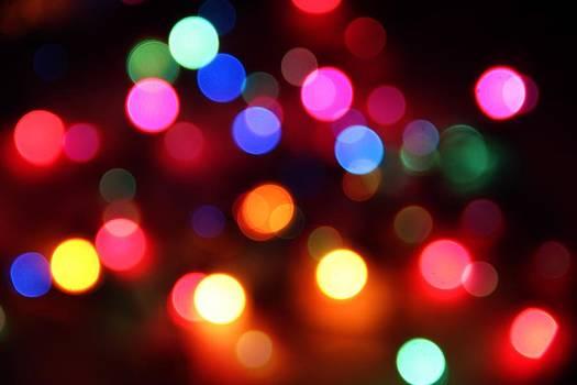 Lights by Elizabeth Budd