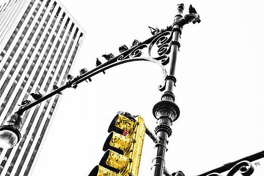 Karol Livote - Lights Over Manhattan
