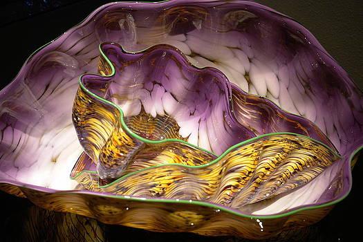 Like Shells by Carolyn Marchetti