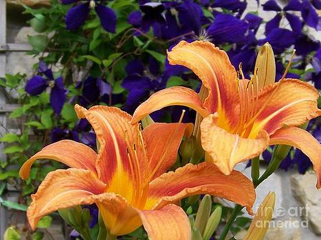 Lilies and Clematis by Jackie Mueller-Jones