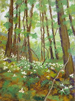 Jennifer Richard-Morrow - Lilies - Ascension Day