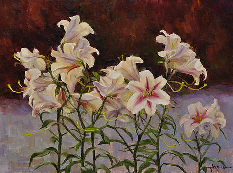 Lilies at Sunset by Scott Harding