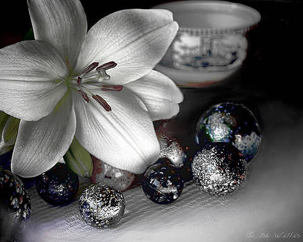 Lily and Marbles by Bonnie Willis