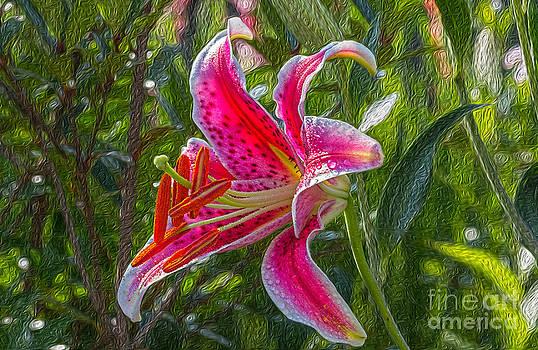 Lily by Bernd Laeschke