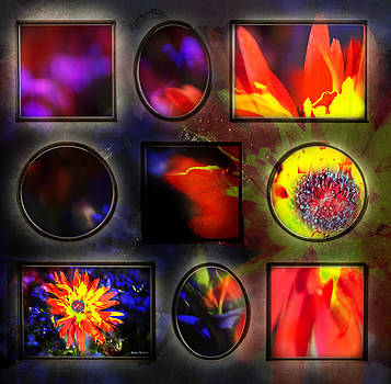 Lily Collage by Gunter Nezhoda