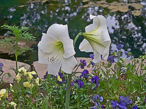 Lily by Julie Grace