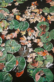 Lily Pads and Leaves by Anthony Mezza