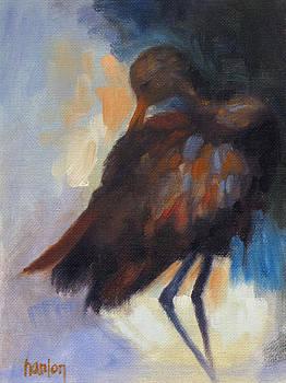 Limpkin by Susan Hanlon