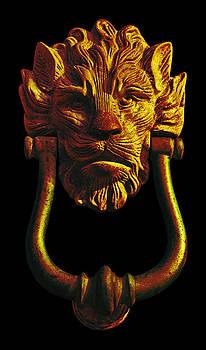 Jane McIlroy - Lion Head Antique Door Knocker in Black and Gold