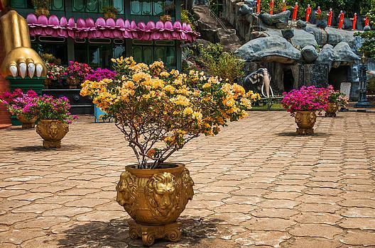 Jenny Rainbow - Lion Vases at Golden Temple in Dambulla