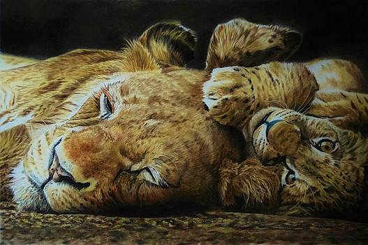 Lioness and cub by Julian Wheat