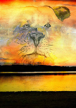 Lioness at dusk by Cosmin Bicu