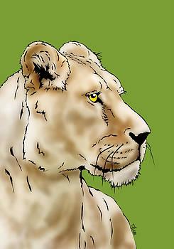 Lioness by Tony Clark