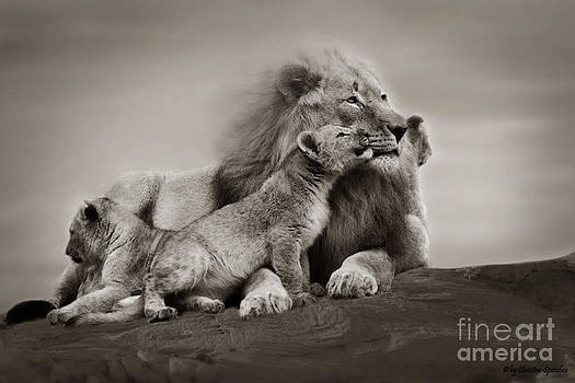 Lions in freedom by Christine Sponchia