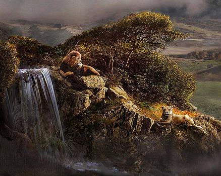 Lion's Rock by Melinda Hughes-Berland