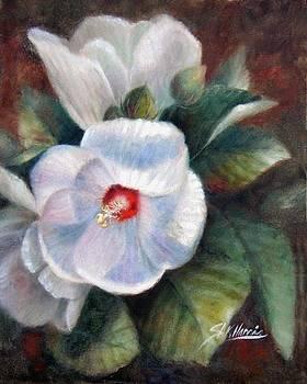 Lipstick Hibiscus Flowers by Sharen AK Harris